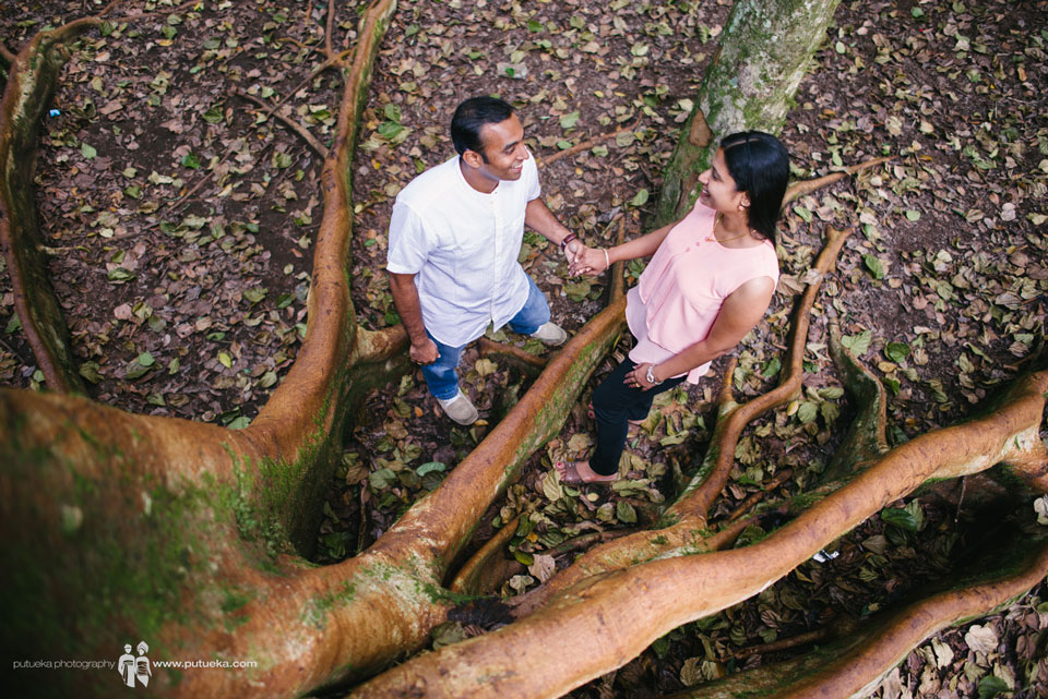 Their love flow through big tree roots