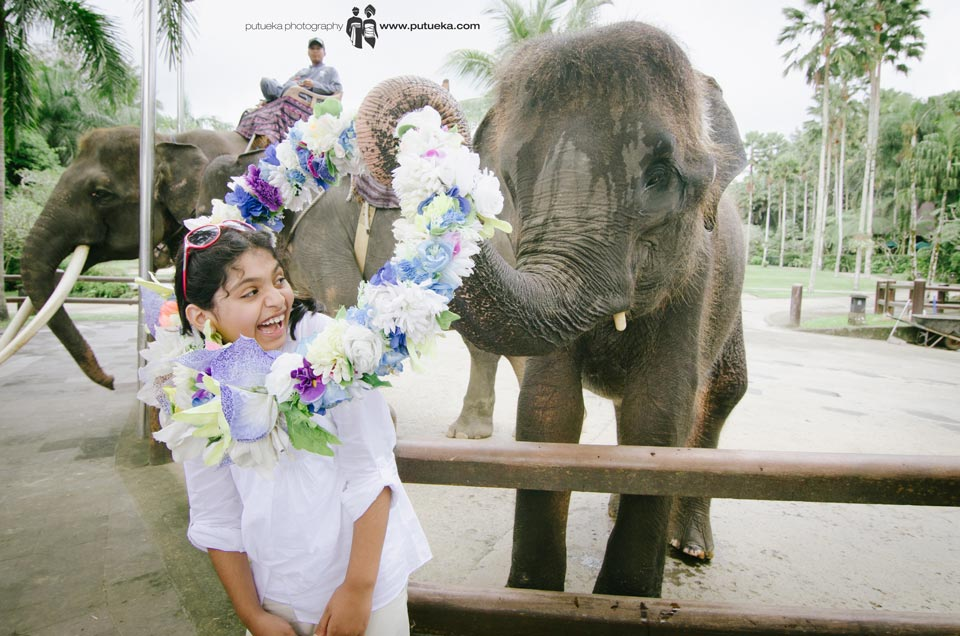 Little bit scary when the elephant put on the flower