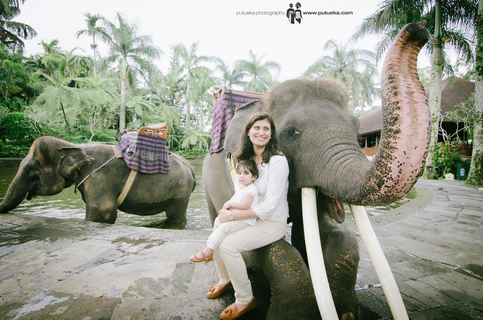 Sitting on the elephant front leg