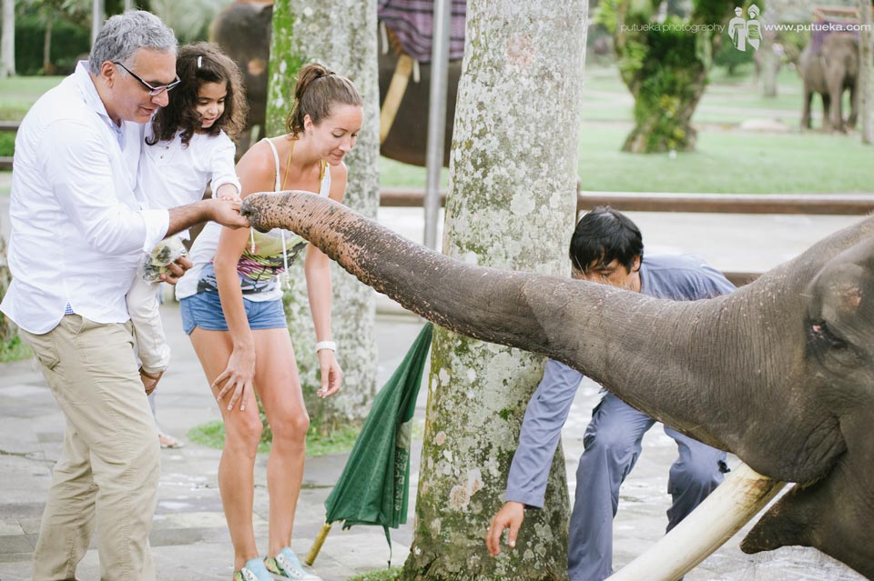 Father and kid feeding the elephant