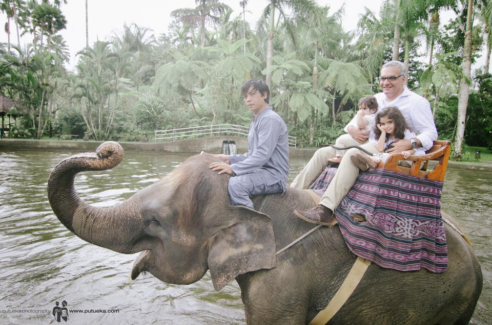 Riding elephant through the pond