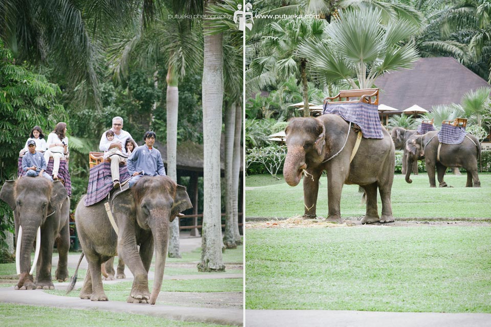 Riding elephant through the park