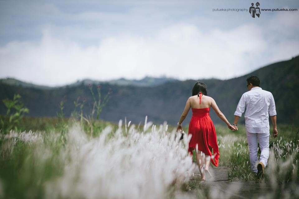 Bromo Java pre wedding photography in the middle grassland