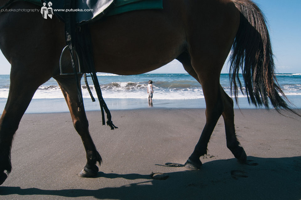 Curious boy about the beach