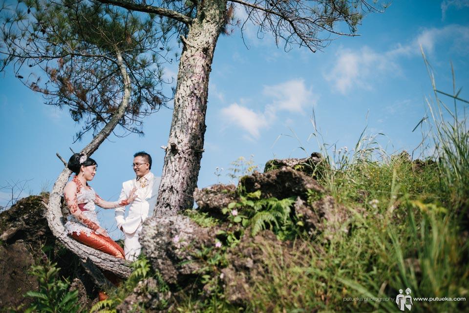 Having a romantic conversation on a tree branch
