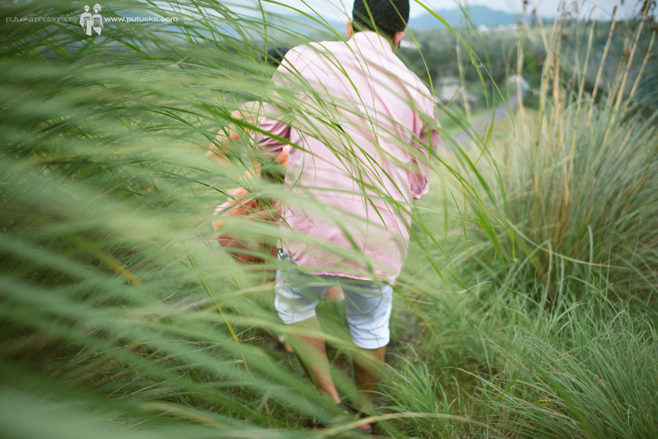 Walking through tall green lush grass