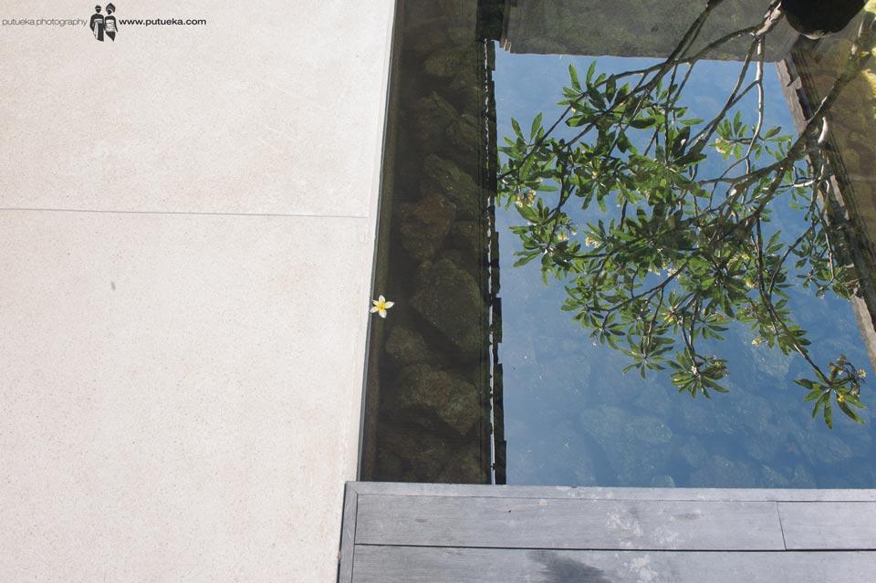Reflection on the water of Frangipani trees at ALila Uluwatu