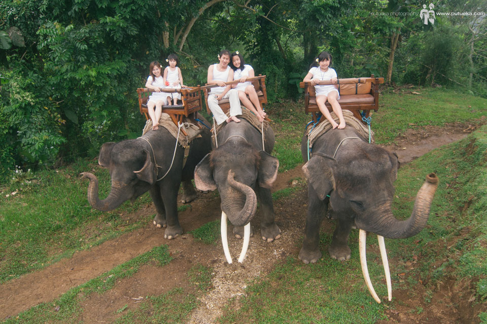 Whole family riding three of elephants
