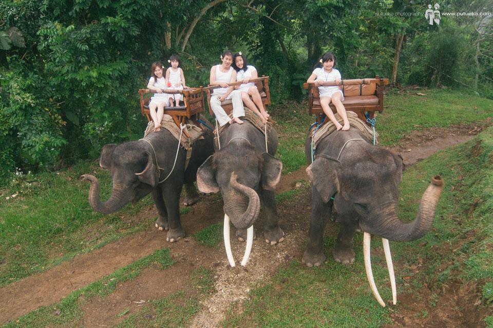 Whole family riding three of elephants