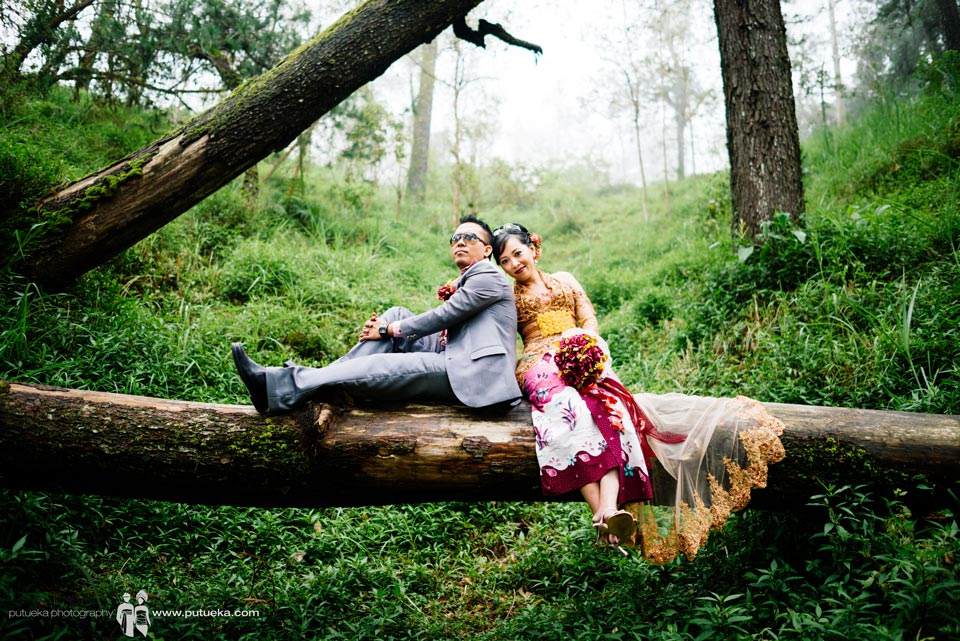 Sit down on big fallen tree at Kintamani Bali