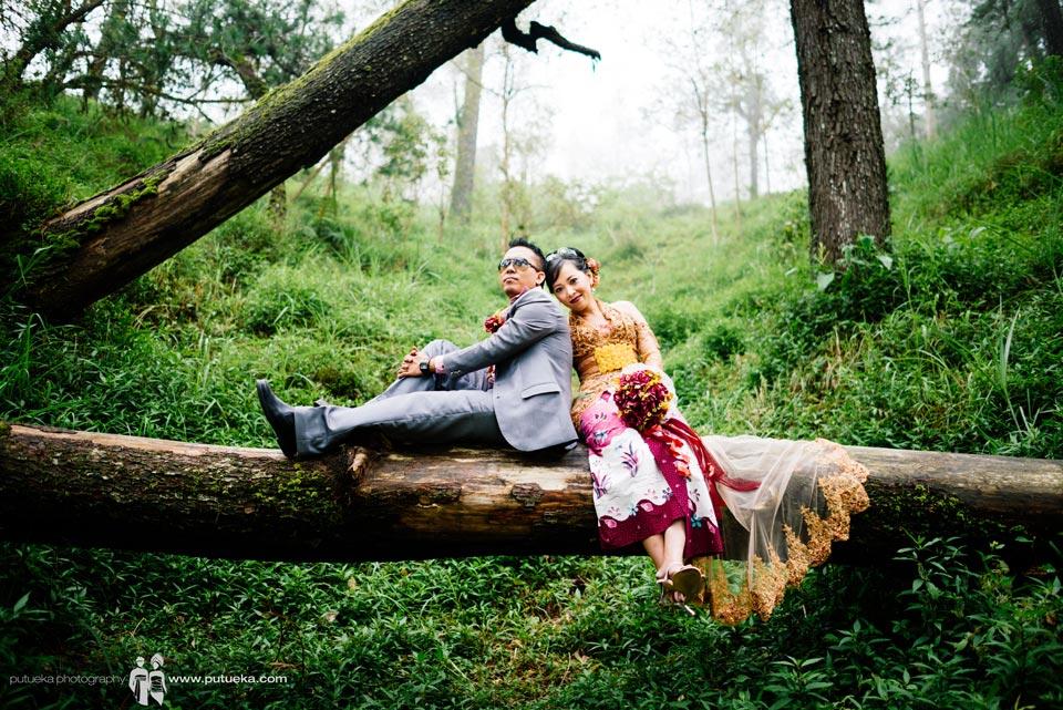 Sit down on big fallen tree at Kintamani Bali