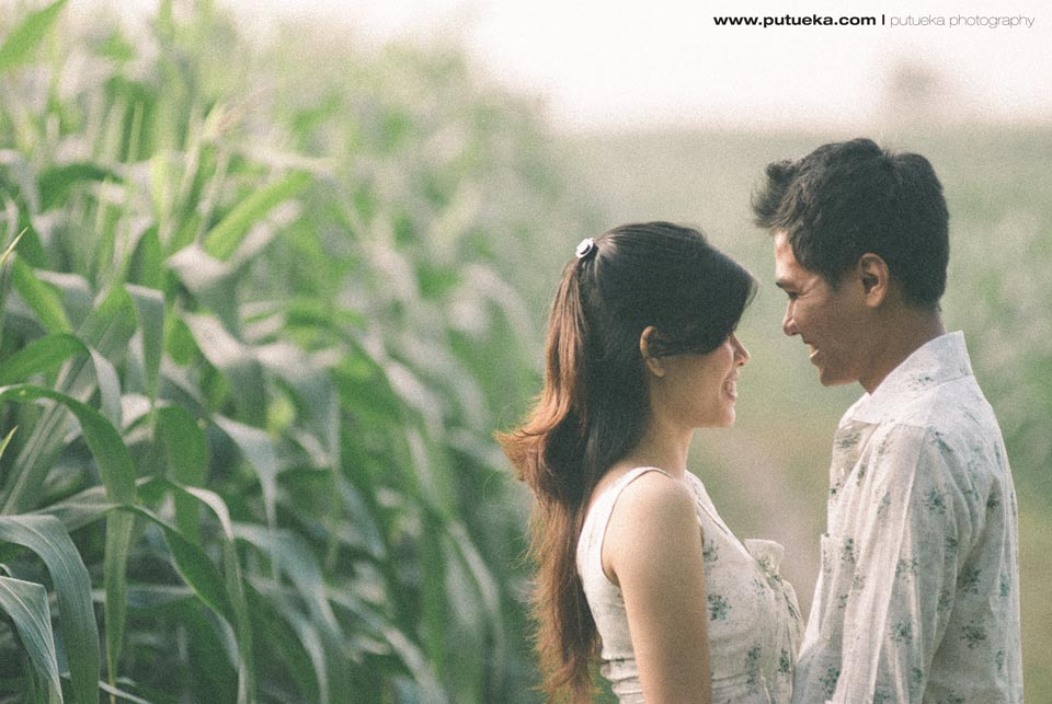Cornfield engagement session with Prima and Sila